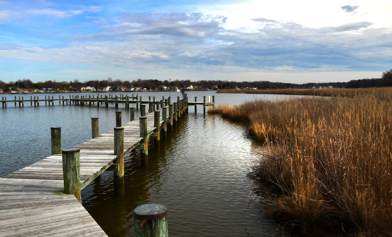 Landscape Photography A Digital Mind Stevensville Kent Island Maryland